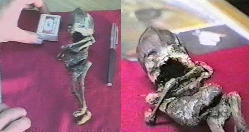 Mumifikované tělíčko Aljošky zkoumali lékaři a přišli k zajímavým závěrům. Zdroj: uralpress.ru