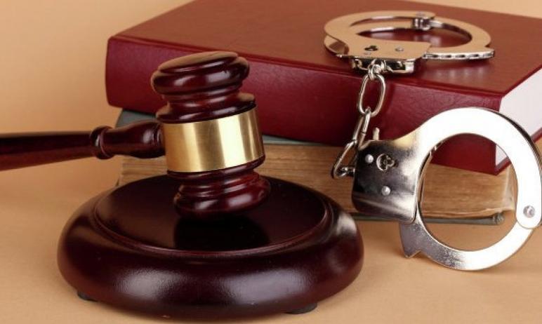 В Троицке (Челябинская область) вынесли приговор 30-летней жительнице Верхнеуральского района, ко
