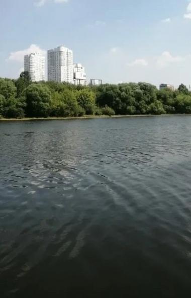 Заместитель министра экологии региона Виталий Безруков сообщил, что очистка реки Миасс в столице
