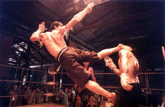 Соревнования пройдут под общим руководством областной Федерации тайского бокса и управления физич
