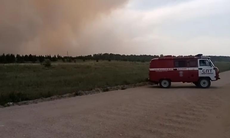 В Карталинском муниципальном районе (Челябинская область) горит лес, местные жители в панике.