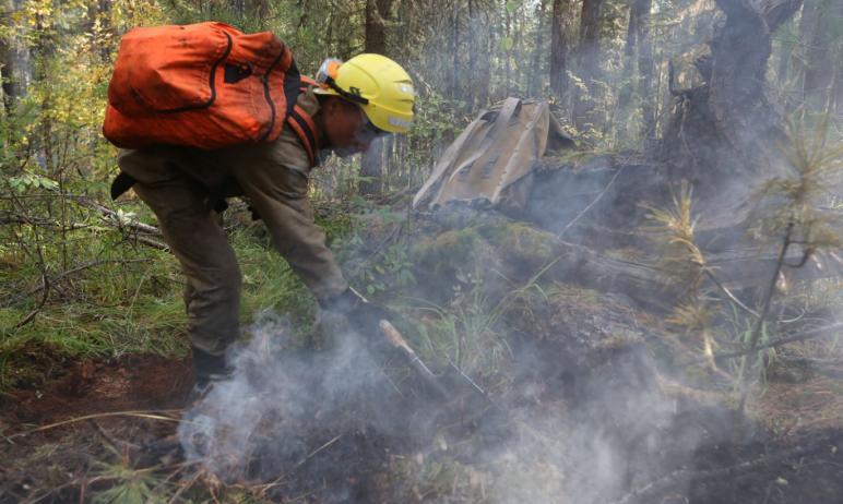 Пожароопасный сезон на территории Челябинской области в 2021 году будет установлен 10 апреля. В п