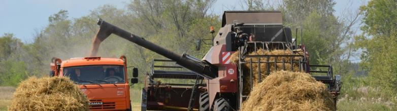 Губернатор Челябинской области Алексей Текслер поручил главам сельскохозяйственн