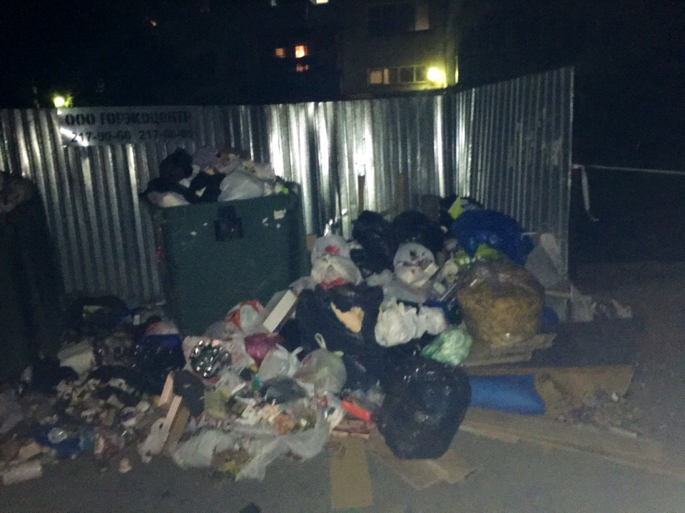 Кто в ответе за мусорный коллапс в Челябинске? Ответ на этот вопрос поможет дать генпрокуратура Р