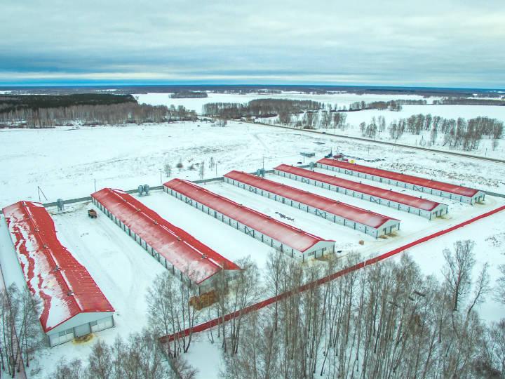Как сообщили агентству «Урал-пресс-информ» в пресс-службе компании, подключение птицеферм мощност