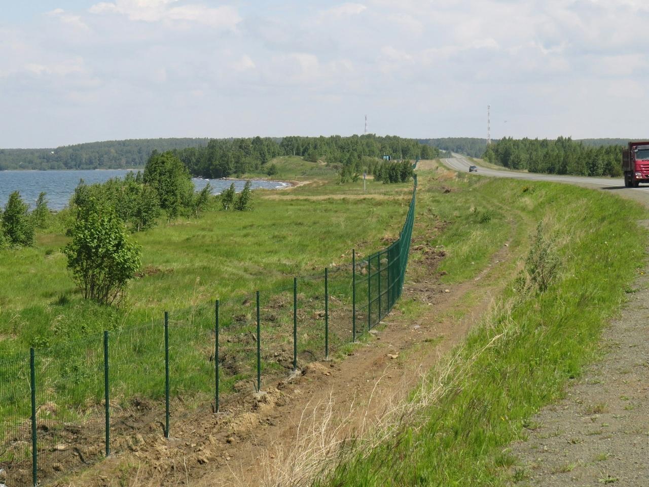 Жителям Челябинской области вернут бесплатный пляж на озере Увильды. Министерство экологии регион