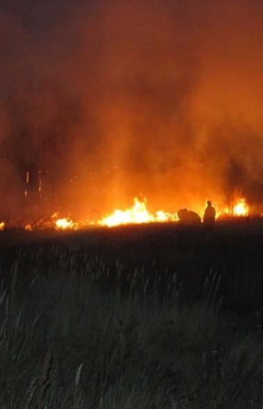 В Брединском районе (Челябинская область) огнеборцы вторые сутки ликвидируют крупный лесной пожар