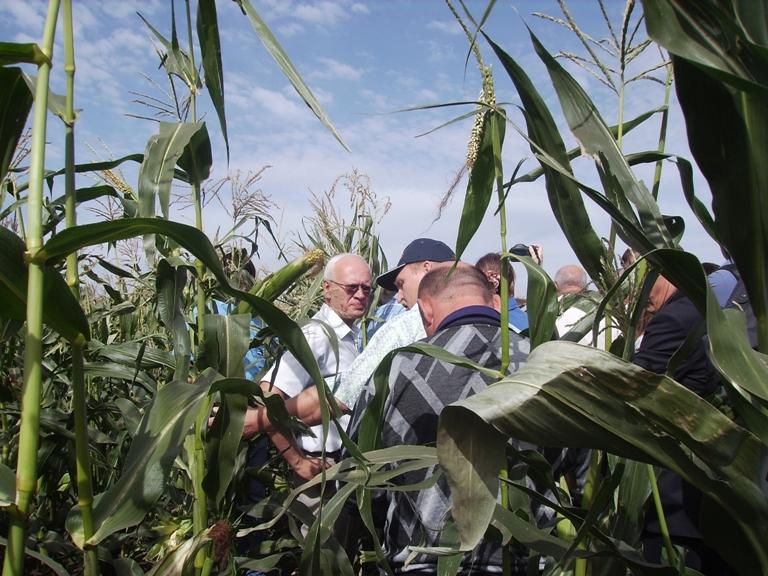 Организаторами выступили министерство сельского хозяйства Челябинской области и свердловское НП «