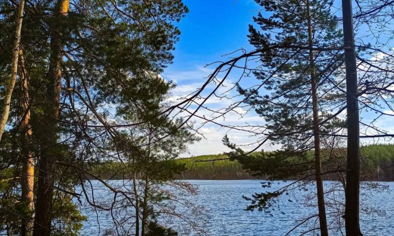 В День Победы, девятого мая, в Челябинской области ожидается теплая и ветреная погода, преимущест