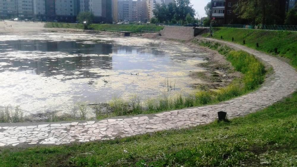 Пруд «Девичьи слезы» в Ленинском районе Челябинска до 30 июня очистят от тины. До третьего июля б