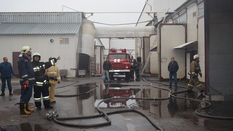 Как прокомментировали происшествие агентству «Урал-пресс-информ» в пресс-службе МПК «Ромкор», вып