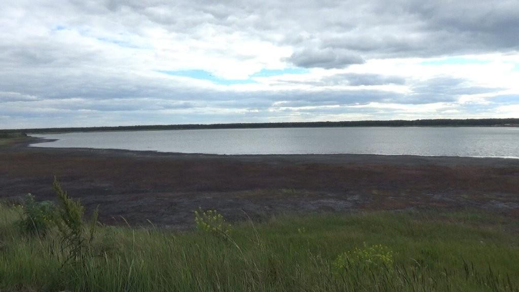Министерство экологии Челябинской области прокомментировало ситуацию с озеро Курочкино в копейско
