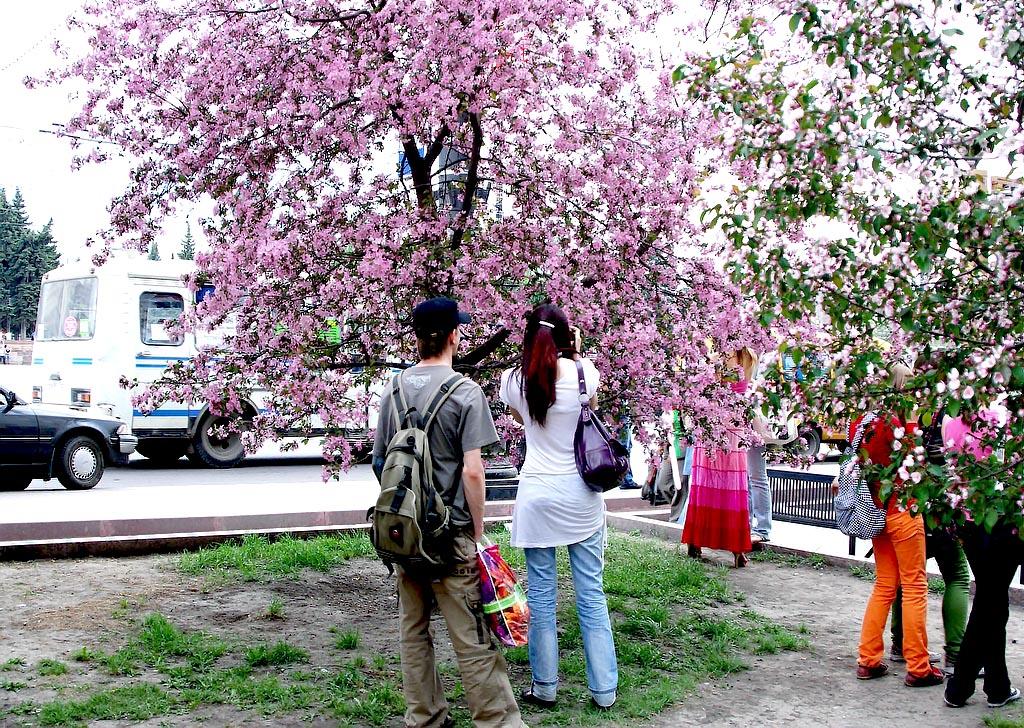 Отопительный сезон в Челябинской области планируется полностью завершить к 15 мая. Как соо