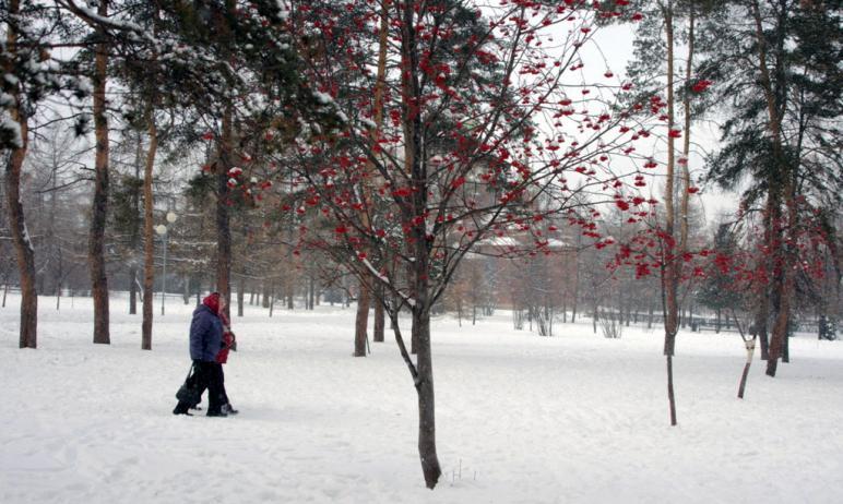 В четверг, четвертого февраля, в Челябинской области ожидается облачна погода с прояснениями, неб