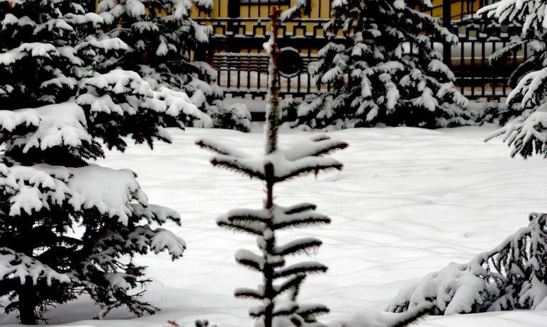 В ночь со второго на третье февраля снегопад прошел во всех районах Челябинской области. На уборк