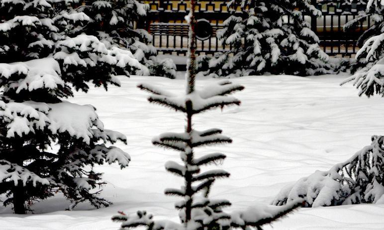 В предстоящие выходные, шестого и седьмого февраля, в Челябинской области ожидается облачная пого