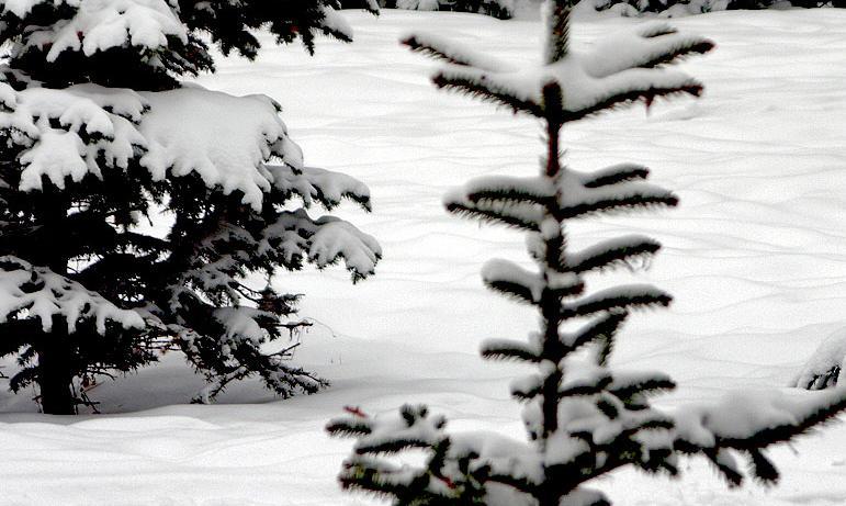 В понедельник, восьмого февраля, в Челябинской области ожидается облачная погода с прояснениями,