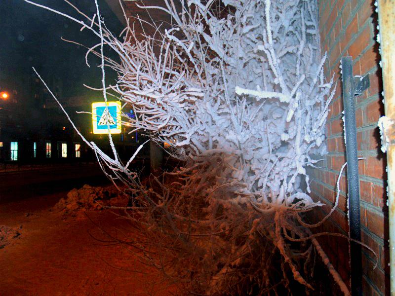 По данным Челябинского Гидрометеоцентра, 22-го февраля ночью минус 31-36 градус, в пониженных час