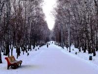 По данным Гидрометцентра, сегодня утром в Челябинске было минус 24 градуса, ветер северо-западный