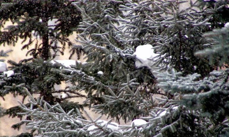 Во вторник, пятого января, в Челябинской области сохраняется погода спастического типа – ночные м