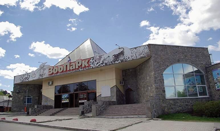 Администрация Челябинского городского округа ответила зоозащитнику Карену Даллакяну на обвинение